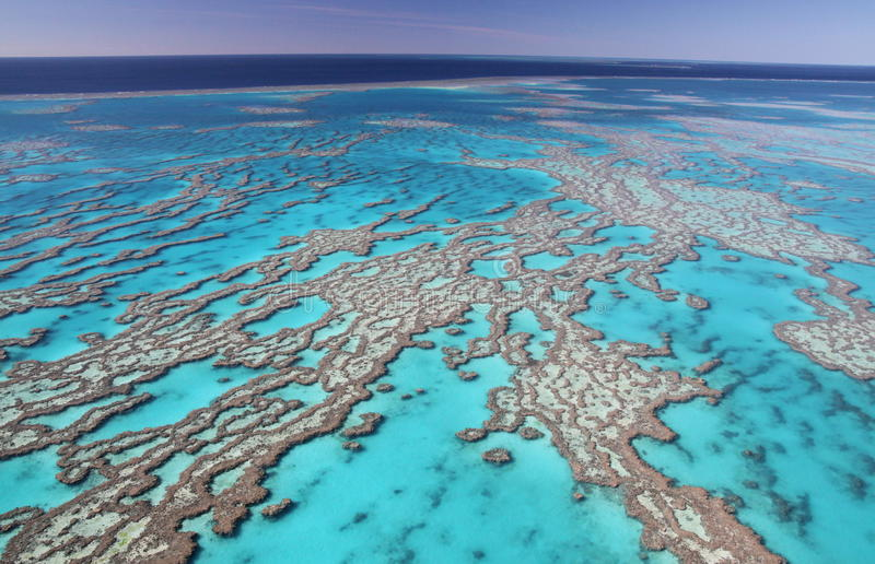Great Barrier Reef stock photography