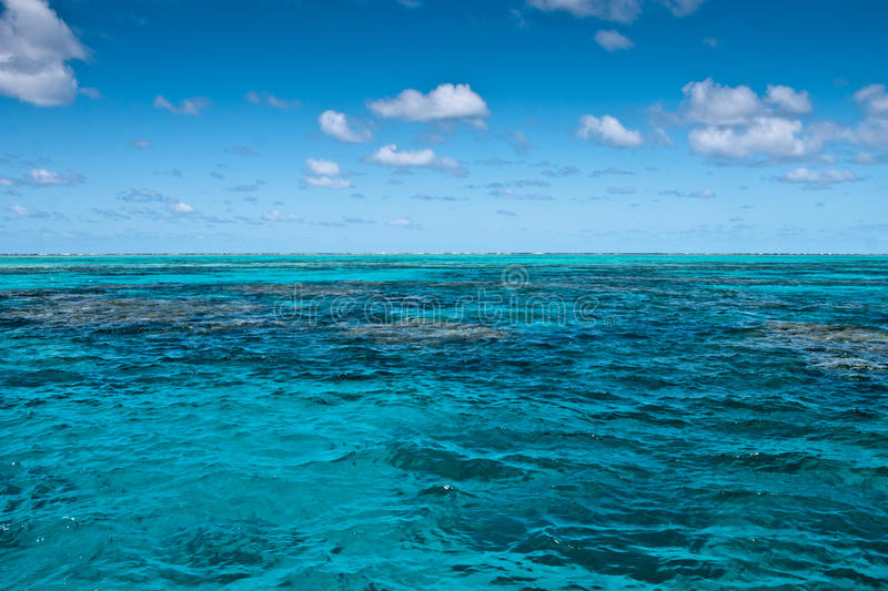 Download Great Barrier Reef Near Port Douglas Stock Photo - Image: 14673580
