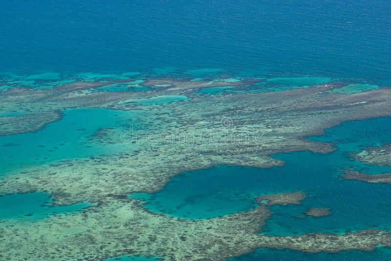 Great Barrier Reef. The Great Barrier Reef is one of the seven wonders of the natural world. The reef contains an abundance of marine life and comprises of over royalty free stock photography