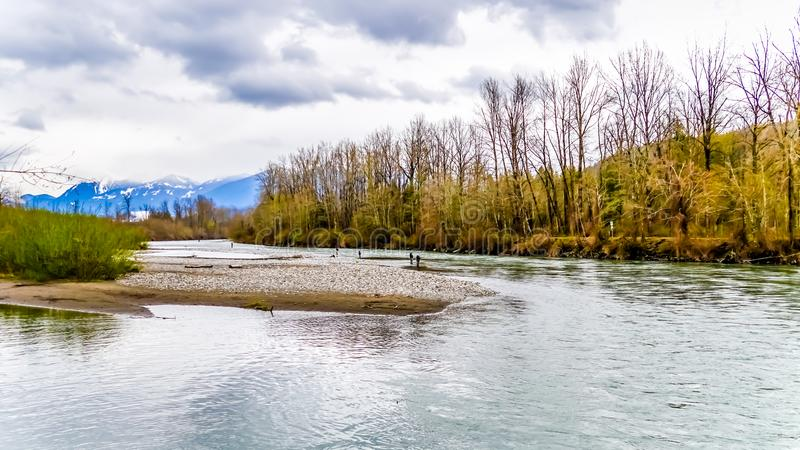 The Great Blue Heron Nature Reserve near Chilliwack, British Columbia, Canada stock image