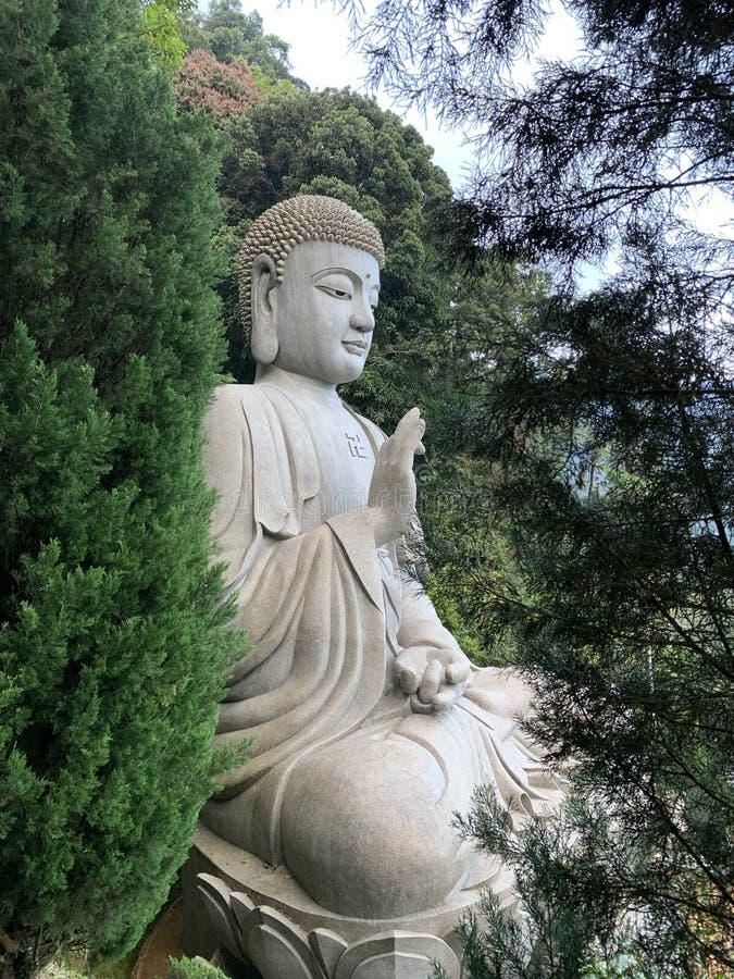 Great Buddha statue in a forest. Siddhārtha Gautama or Siddhattha Gotama in Pali, also called the Gautama Buddha, the Shakyamuni Buddha or simply the Buddha stock image