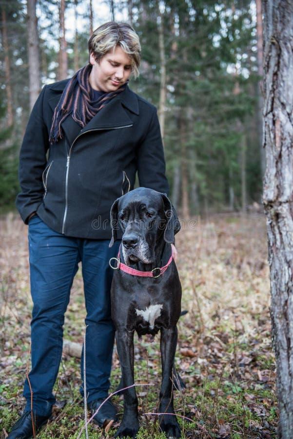 Great dane hund och man royaltyfria bilder
