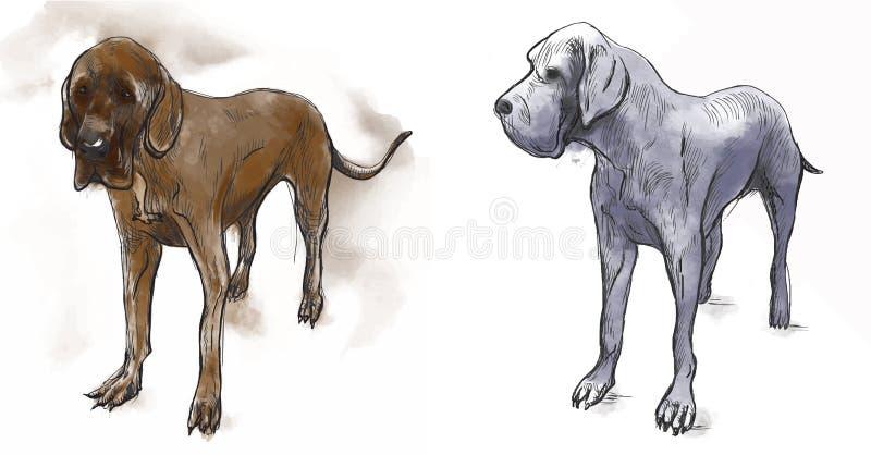Great dane (mastiff allemand) - une illustration tirée par la main de vecteur illustration stock