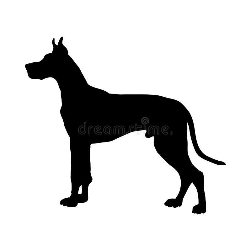 Great Dane psa sylwetka ilustracji