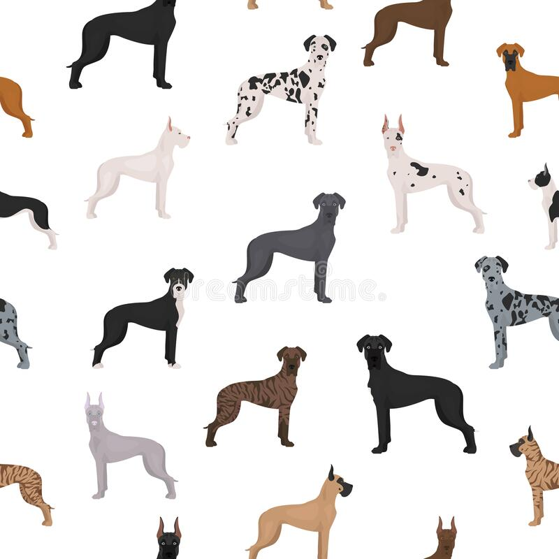 Free Great Dane Seamless Pattern. Different Variaties Of Coat Color Dog Set Stock Photos - 174634703