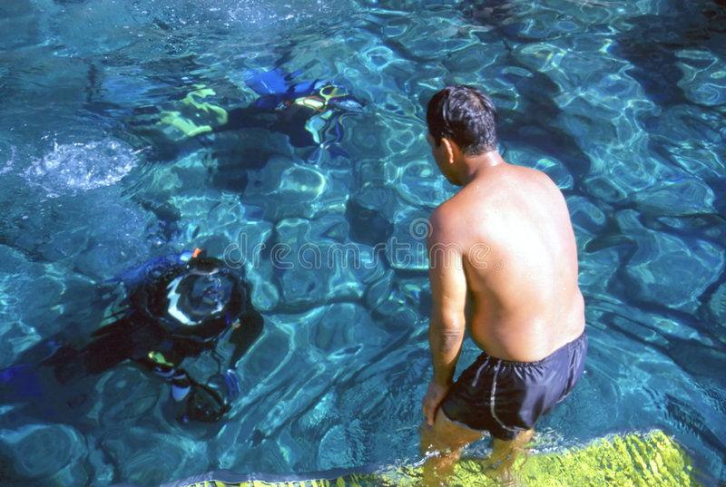 Download Great Dive !! stock photo. Image of dive, life, reef, diver - 123408