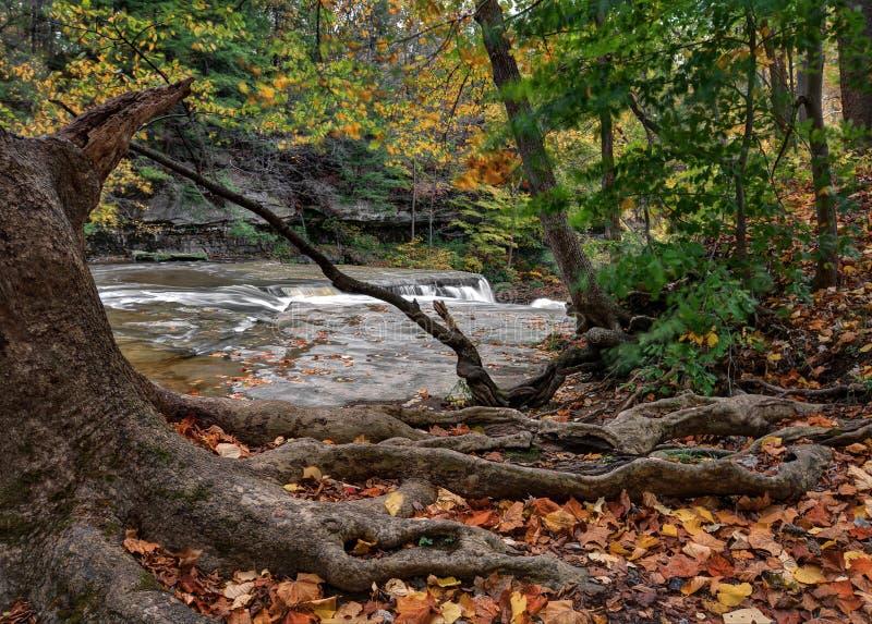 Great Falls della gola dell'insenatura del ` s dello stagnaio fotografie stock libere da diritti