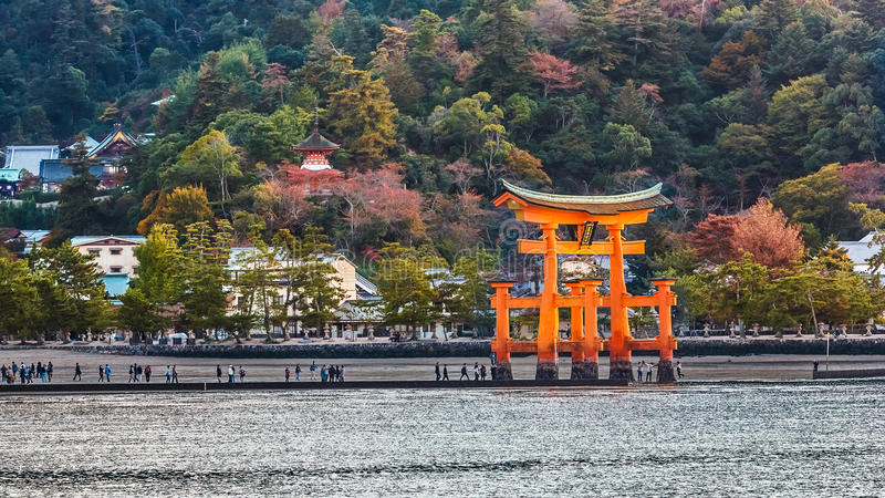 Great floating gate (O-Torii) on Miyajima island. MIYAJIMA, JAPAN - NOVEMBER 15: O-Torii in Miyajima, Japan on November 15, 2013. Great floating gate (O-Torii) stock photos
