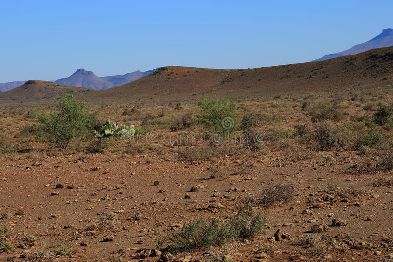 Great Karoo landscape South Africa. Landscape of the Great Karoo natural region in the Western Cape of South Africa stock photos