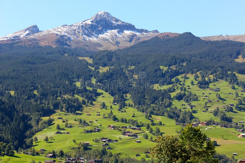 Great mountain, woodland and the green valley. Great rocky mountain, woodland and the green valley where there are visible chalets, huts and houses among the royalty free stock photography