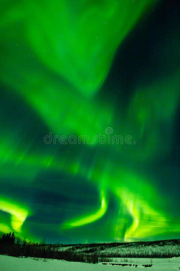 Great Northern Lights. Verticle Composition Of Greenish Dancing Swirls Of Northern Lights Against Starry Sky royalty free stock photography