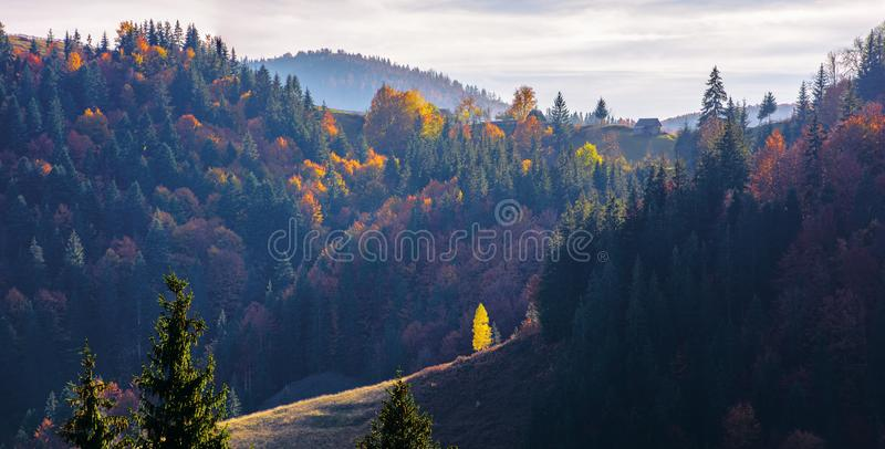 Great panoramic view of romania mountain landscape stock image