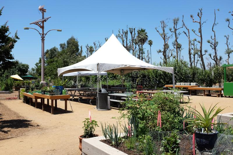 Great Park Farm and Food Lab. A one acre plot in Irvine`s Great Part established as a demonstration of sustainable urban. IRIVNE, CALIFORNIA - JULY 11, 2019 stock photo