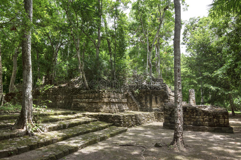 Great Plaza of Mayan ruins at Calakmul stock photo