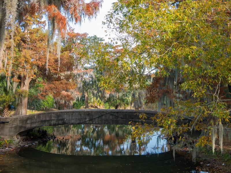 Great point of view in the beautiful City Park of New Orleans royalty free stock photos