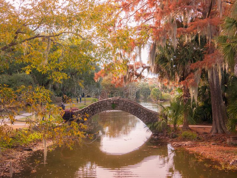 Great point of view in the beautiful City Park of New Orleans durng the sunset royalty free stock images
