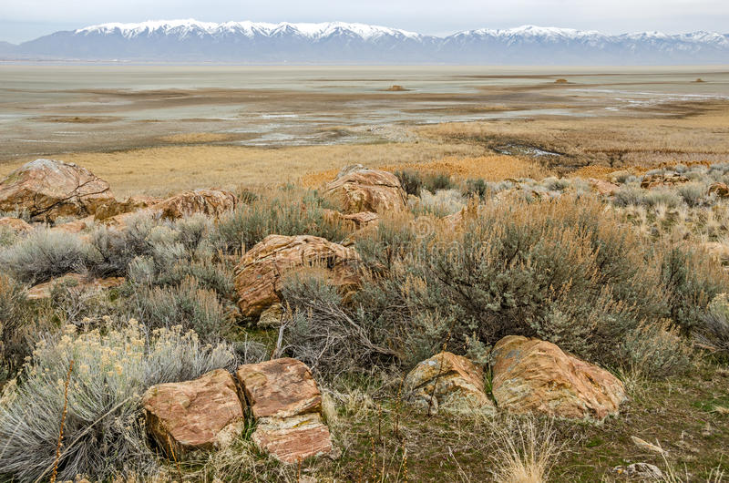 Great Salt Lake Between Rocks and Mountains. Colorful rocks among Big Sagebrush (Artemisla tridentata) on Antelope Island make a beautiful foreground with the royalty free stock image