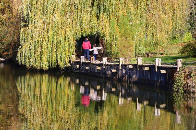 Stroll by the lake among yellowed leaves royalty free stock photography