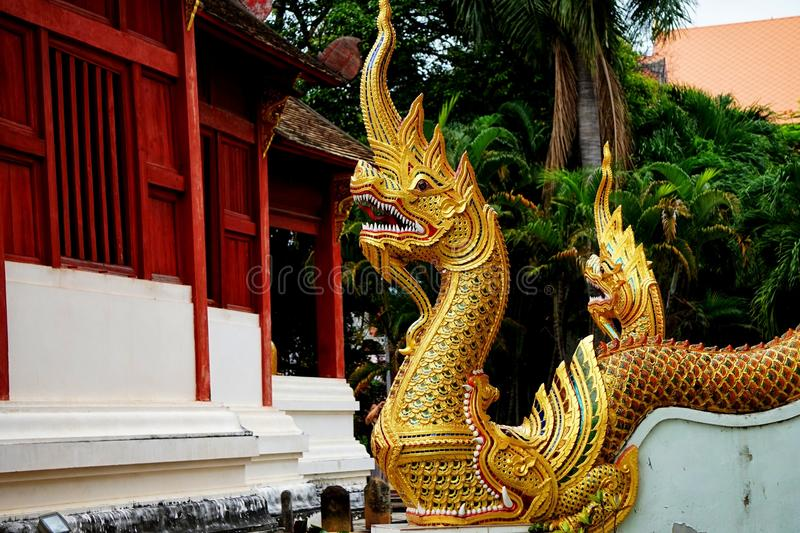 The Great Serpent in buddha temple royalty free stock images