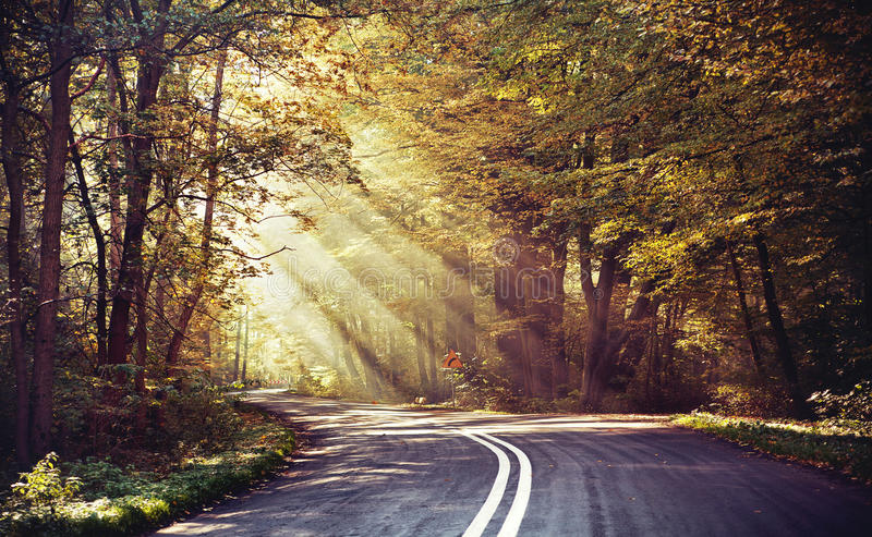 Download Great Shoot Of Sunbeams Above The Road Royalty Free Stock Images - Image: 27850839