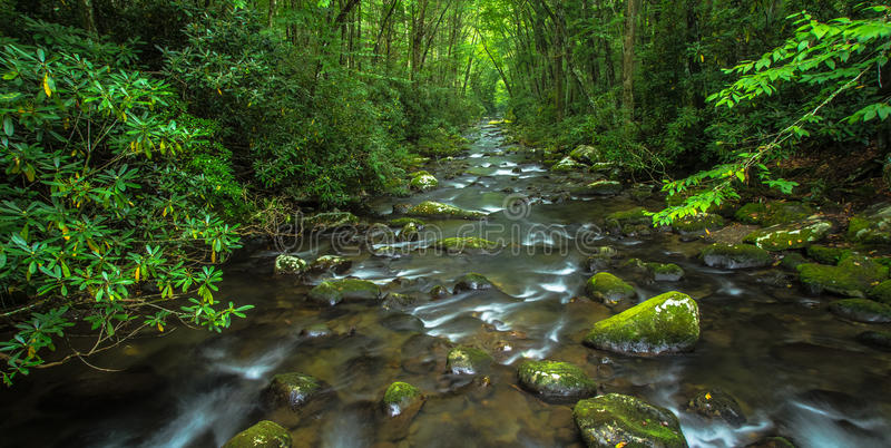 Great Smoky Mountain River. River rushes through the lush spring foliage of the Great Smoky Mountain National Park. Gatlinburg, Tennessee royalty free stock image