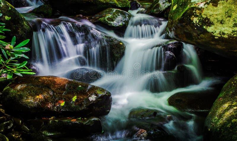 Great Smoky Mountain Stream. Pristine mountain stream rushes through the Smoky Mountain wilderness. Gatlinburg, Tennessee royalty free stock images