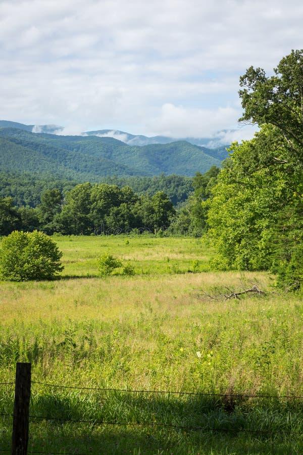 Great Smoky Mountains fotografia stock libera da diritti