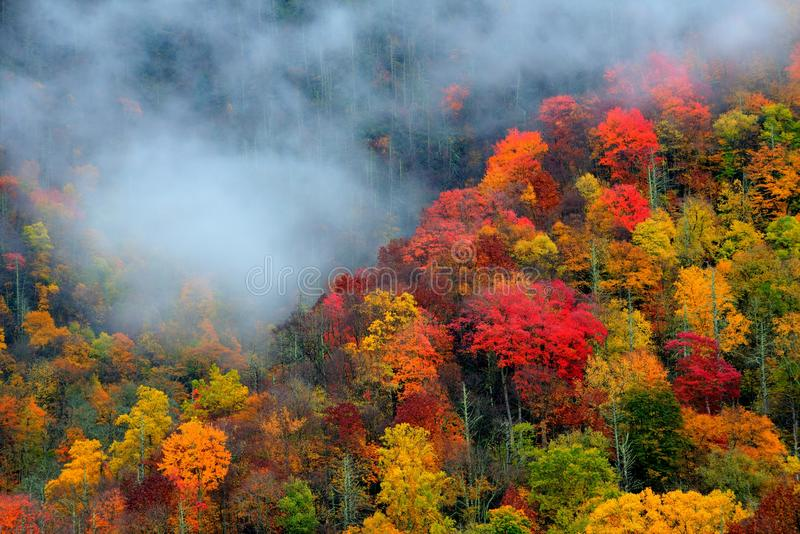 Great Smoky Mountains National Park in October stock photos
