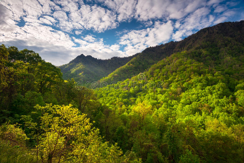 Great Smoky Mountains National Park Scenic Landscape Photography. Gatlinburg TN featuring morning light skipping across popular hiking area The Chimneys royalty free stock photography