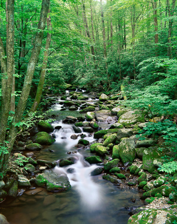 Great Smoky Mountains National Park, Tennessee Stock Image