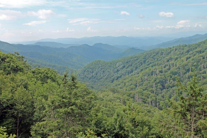 Great Smoky Mountains nationalpark som sträcker till avståndet fotografering för bildbyråer