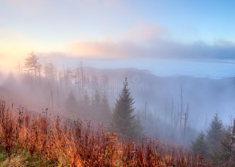 Great Smoky Mountains in nebbia. immagini stock