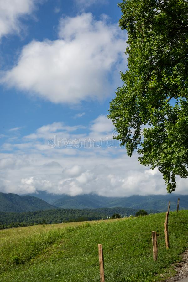 Great Smoky Mountains. The Great Smoky Mountains in summer around Tennessee stock image