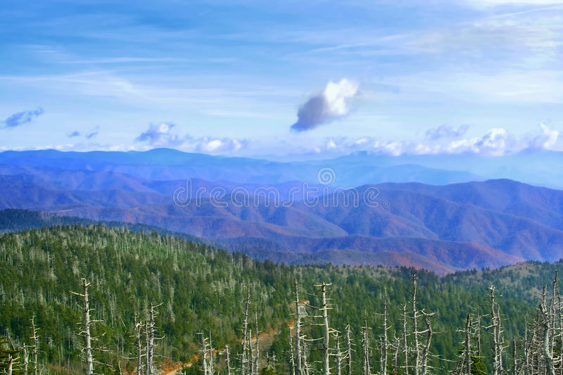 Great Smoky Mountains, USA Royalty Free Stock Image
