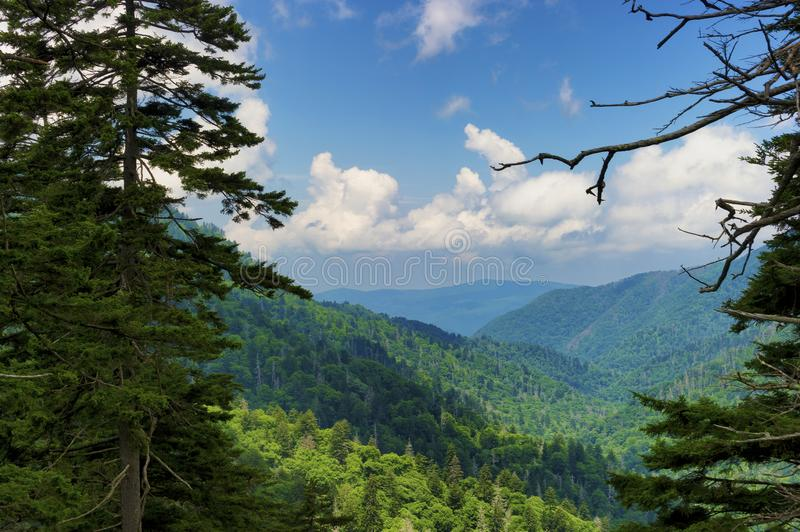 Great Smoky Mountains National Park in summer. Summertime vista views of the Great Smoky Mountains near Gatlinburg, Tennessee stock images