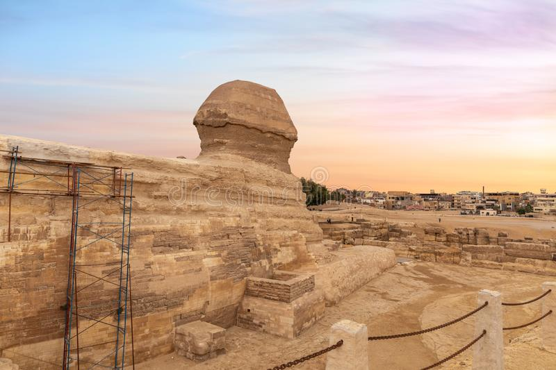 The Great Sphinx and the buildings of Giza, Cairo, Egypt.  royalty free stock photography