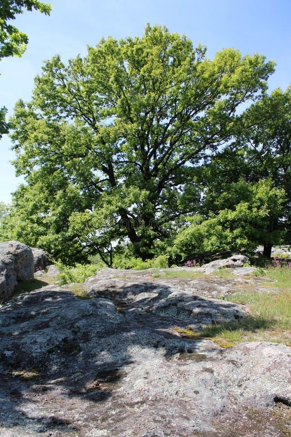 Free Great Stones At Szentbekalla Stock Photo - 158670310