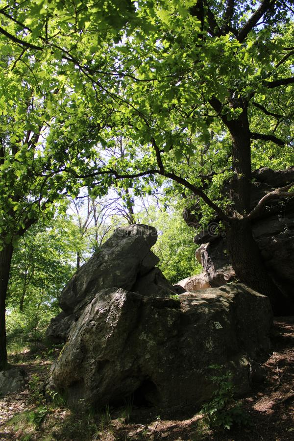 Free Great Stones At Szentbekalla Royalty Free Stock Photography - 158671687