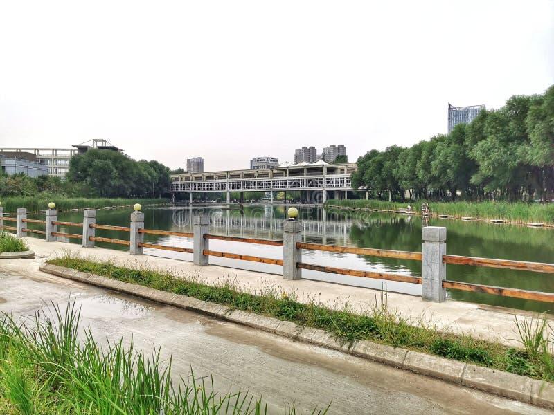 Great view of the bridge stock image