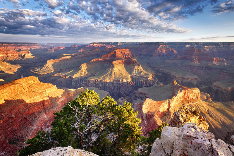 Great view of Grand Canyon stock photo