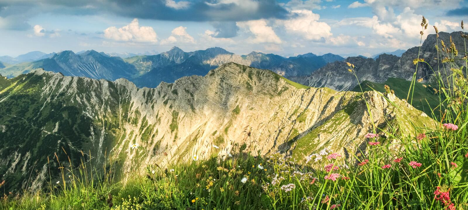 Great view to mountains in beautiful light. Flowers and grass. stock photos