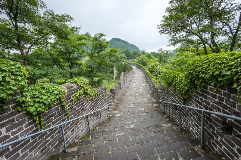 The Great Wall of China in Dandong. China royalty free stock image