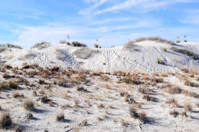 Amazing White Sands Desert in New Mexico, USA stock photos