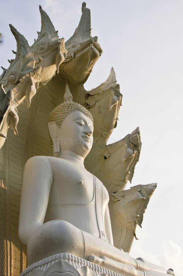 Great White Buddha. royalty free stock photography