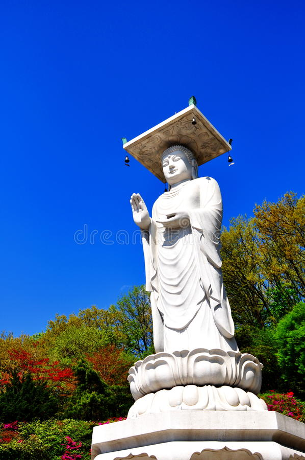 Download Great White Buddha Statue In Korea Stock Photo - Image: 25175330