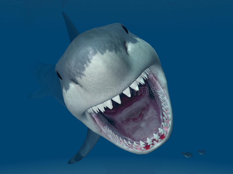 Great White Shark Attack vector illustration