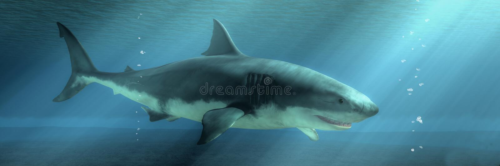Great White Shark on the Prowl. The menacing profile of a great white shark emerges from the depths of the deep blue sea. Sunlight breaks the surface of the royalty free illustration