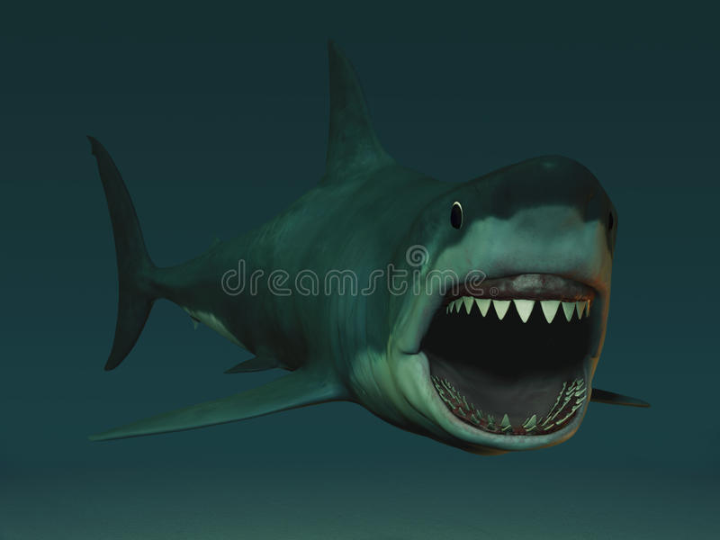 Download Great White Shark Ready To Bite. Stock Illustration - Image: 13494605
