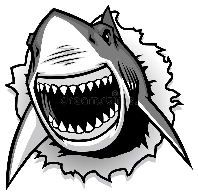 Free Great White Shark Ripping With Opened Mouth Stock Images - 36104944