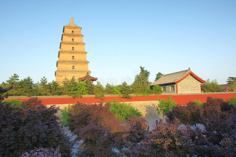 Great Wild Goose Pagoda Park. The landscape of Great Wild Goose Pagoda Park in Xian, Shaanxi, China royalty free stock photo